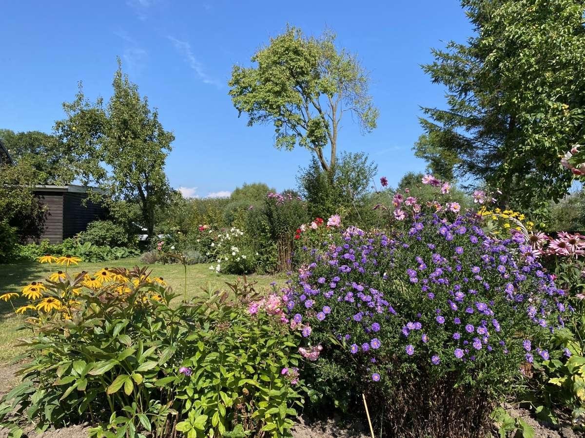 Großer bunter Garten auf dem Land