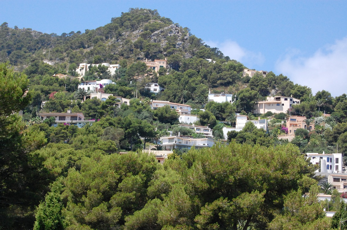 Immobilien Costa de Canyamel Mallorca
